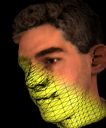 Adaptively Displacement Mapped Head